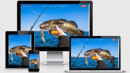 Web Design Ashford Kent | Orca G